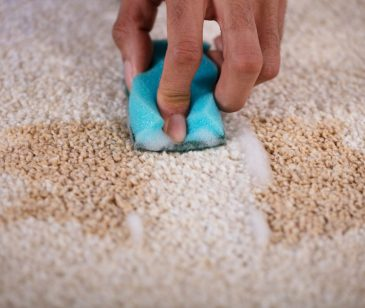 This Is How to Remove Old Stains From Carpet