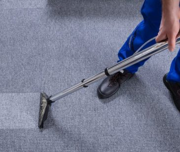 Professional for Carpet Cleaning